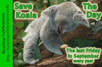 Image result for save the koala Day  images